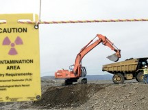 Environmental Remediation– an Overview
