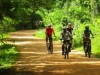 Motorcycle Tours: How to Have a Great Experience?