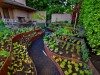 4 Expert Tips To Create Your Own Vegetable Garden at Home
