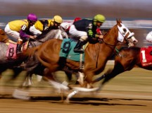 Horse Racing: The benefits of placing an Each Way Bet?
