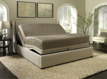 What Bed Is Right for You?