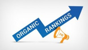 Building Your Organic Ranking the Right Way