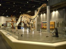 5 Best Science Museums That Must Make It to Your Travel Wish List
