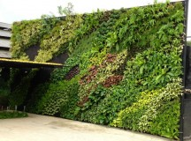 Why you should get Artificial Living Walls