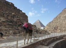 Riding a Camel During an Egypt Trip to the Giza Pyramids