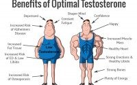 What Are the Best Supplements to Boost Testosterone?