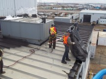 Roof Replacement and Maintenance Tips for Melbourne Residents