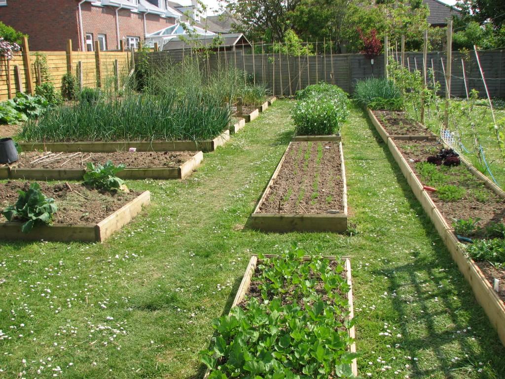 raised garden beds make gardening easier