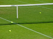 Building a Tennis Court in Your Household
