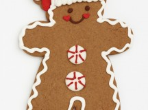 Famous Christmas Cookies Recipes
