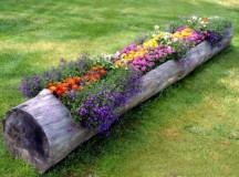 Recicling: How to Turn Junk into Alluring Garden Features