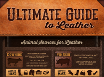 Ultimate Guide to Leather [Infographic]