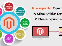 8 Magento Tips to Keep in Mind While Designing & Developing an E-Store