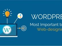 Important Tools For WordPress Developers