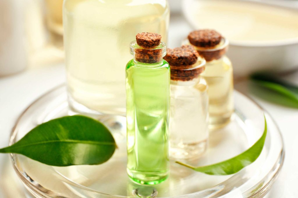 Tea Tree Oil Treatment for Scalp, Acne, and Other Skin Problems
