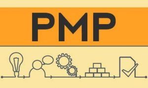 The Industry Importance of PMP Training and Certification
