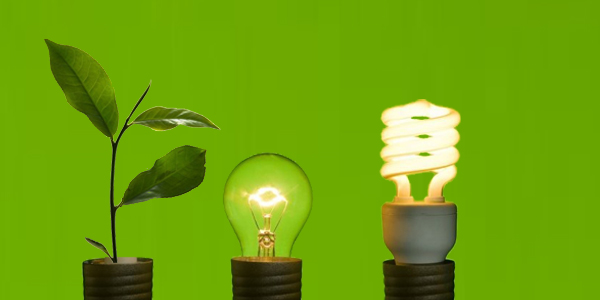 Sustainability Sourcing – Why Businesses Need to Consider the Source of Their Electricity