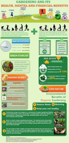 Unique DIY Ideas for the Perfect Garden
