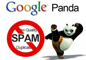 What is a Google Panda Algorithm and how to avoid getting penalized by it