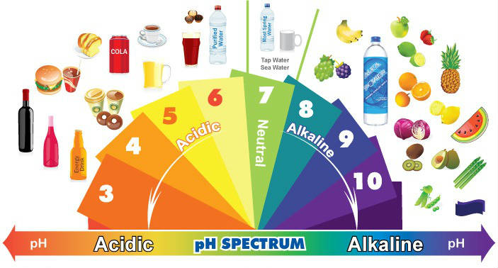 10 Alkaline Foods To Clean, Repair, And Regenerate New Cells