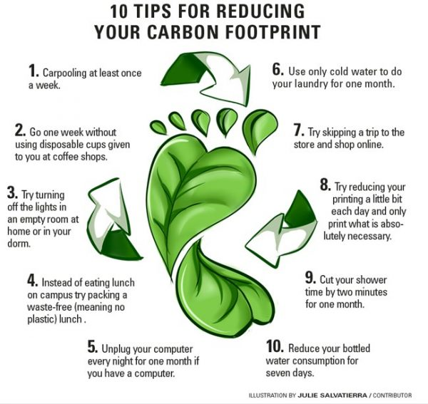 Seven Ways to Reduce Your Carbon Footprint