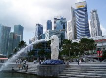 Asia's Start-up Magnet: Why Singapore is an Ideal Haven for Start-Up Companies