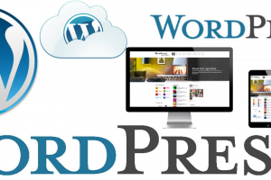 Top Reasons To Choose WordPress For Your Business Website