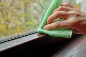 Health Problems Caused by Mold Exposure