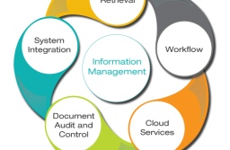 Outsourcing Your Information Management Can Save Time and Expenses