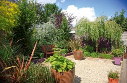Low Maintenance Garden Ideas for your Family Annex