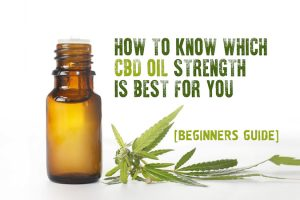 How To Know Which CBD Oil Strength is Good for You