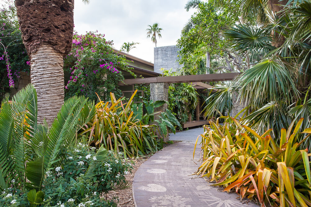 How to Turn Your Garden into an Exotic Escape