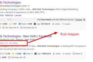 What Type of Information Can Be Displayed as Rich Snippets?