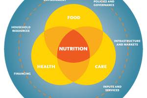 How Nutritional Behaviors May Affect Your Health