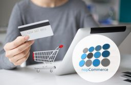 A Deeper Dive Into The Lesser-Known Features of nopCommerce