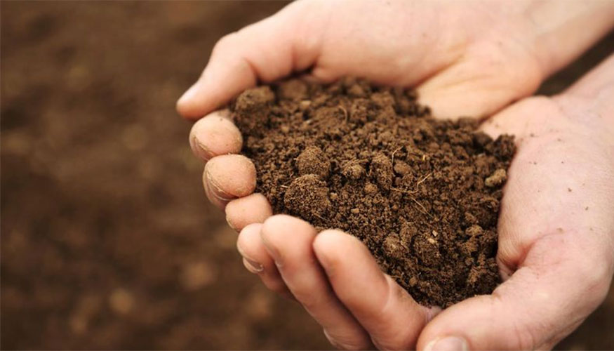 Effect on Soil