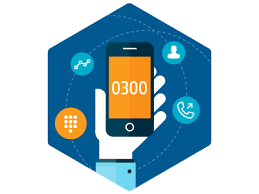 Have you Looked into an 0300 Number for Your Company?