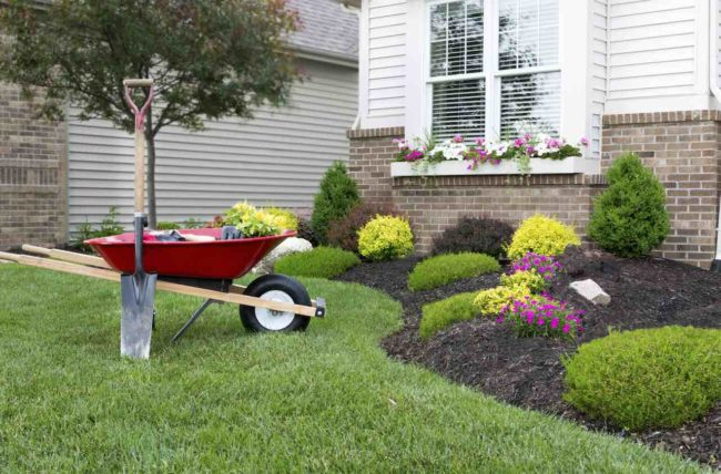 5 Practical Tips to Improve the Curb Appeal of Your House