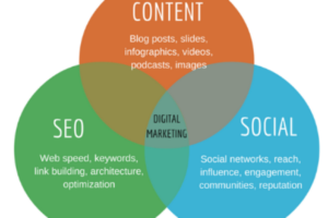 How SEO and Social Media Work Together To Boost Visibility