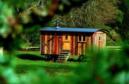 7 Absolutely Brilliant Design Features of Tiny Houses You Are Sure to Love