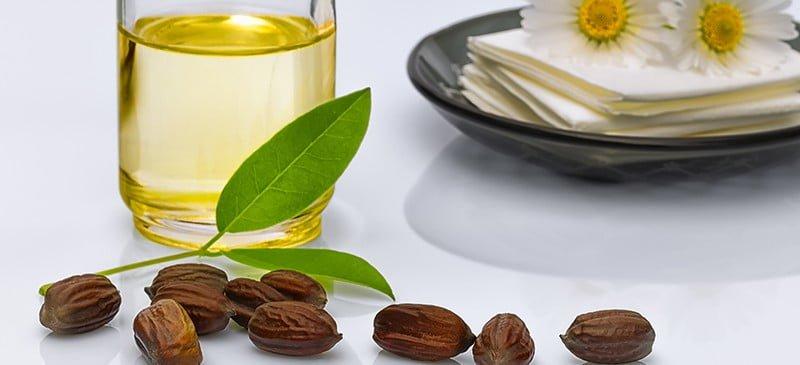 An Expert Guide to the Benefits of Jojoba Oil for Longer Hair